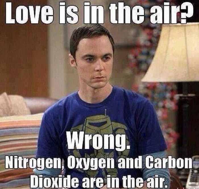 Sheldon Funny Valentine's Day Meme